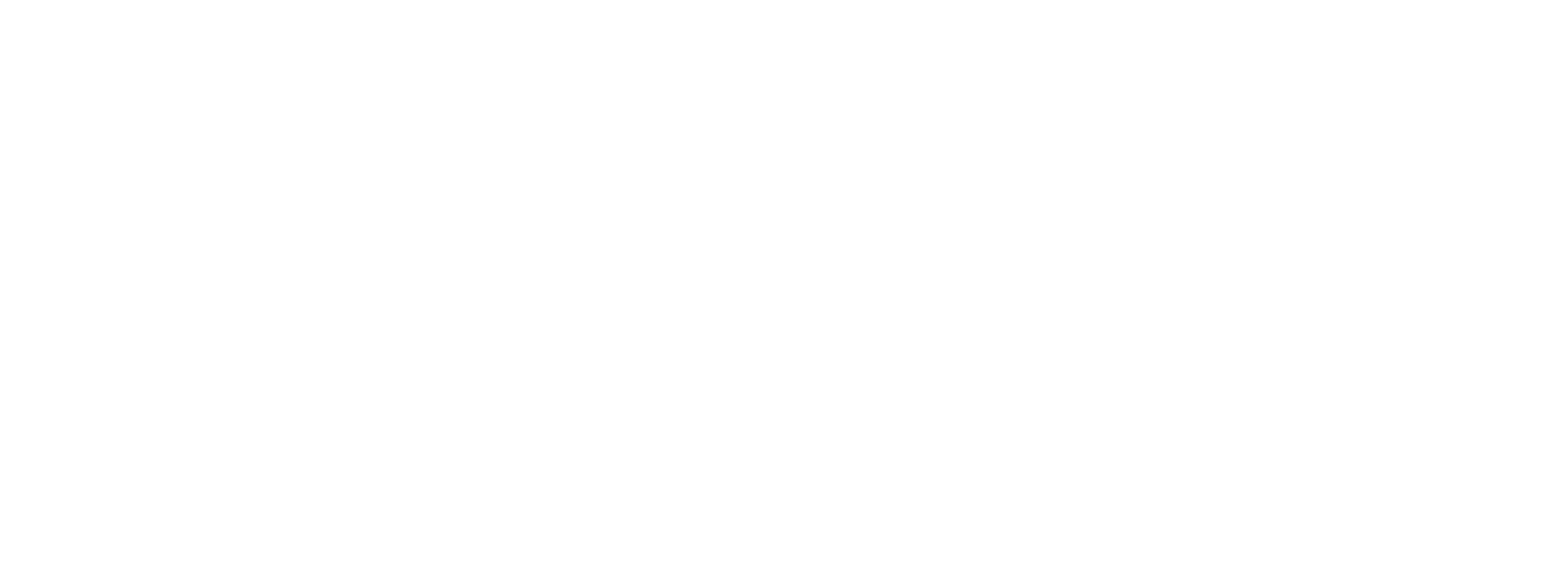 Lynchburg Home Inspector